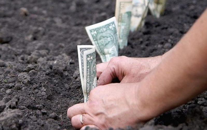 До 31 серпня 2018 року в Україні проведуть нормативну грошову оцінку с/г земель