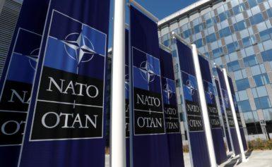 ПА НАТО закликала підтримати надії України на вступ до Альянсу