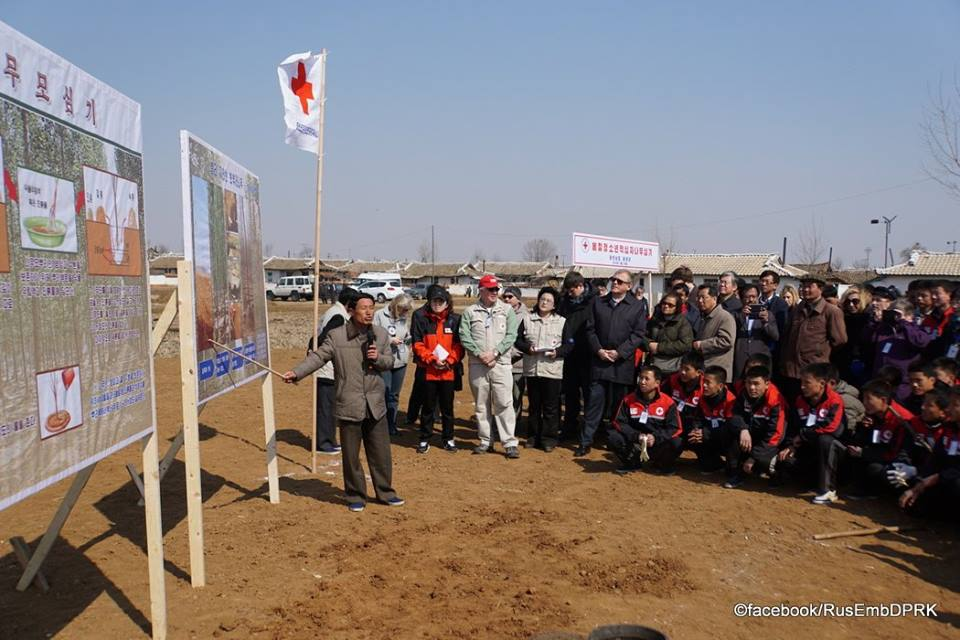 В Червоному Хресті заявили, що понад 70% жителів КНДР перебувають на межі голоду