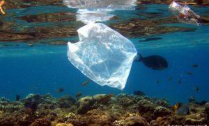 Екологія: Уряд Нової Зеландії збирається заборонити використання одноразових пластикових пакетів